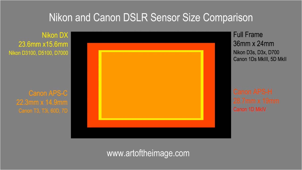 DX (24 x 16mm) vs. FX (36 x 24mm) Formats : What does it really mean ...